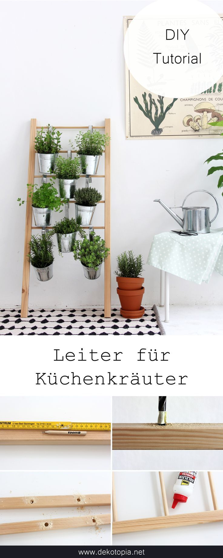 -   DIY instructions: Space-saving plant idea for your kitchen herbs – build herbal ladder yourself