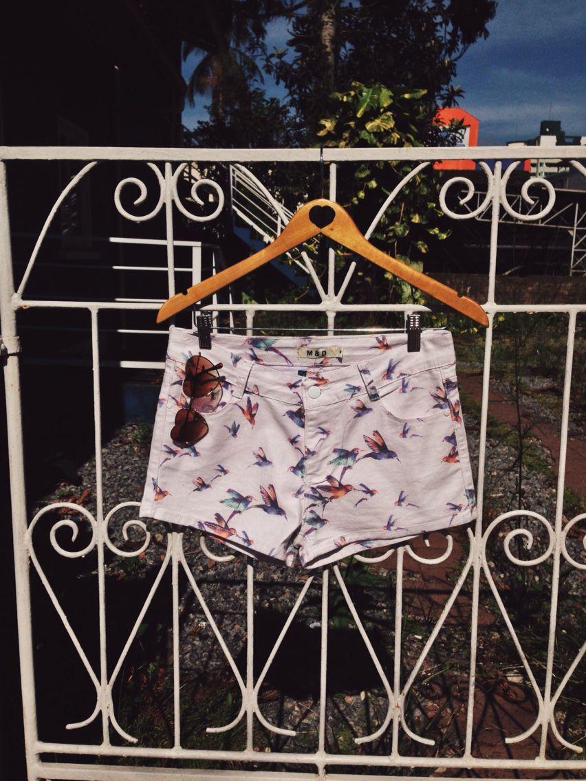 Passarinhos que cantam no portão #shorts #passarinho #lojaamei #muitoamor #diadesol #sol
