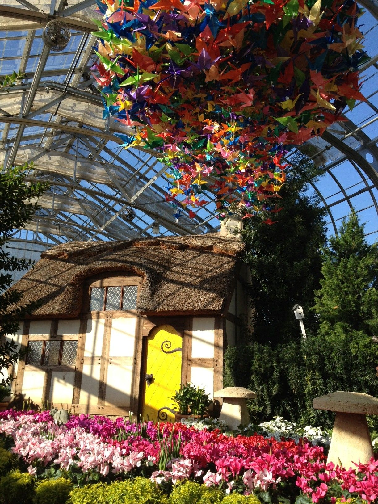 Origami Cranes For Beauty Amp Luck Dominion Gardenfest Of