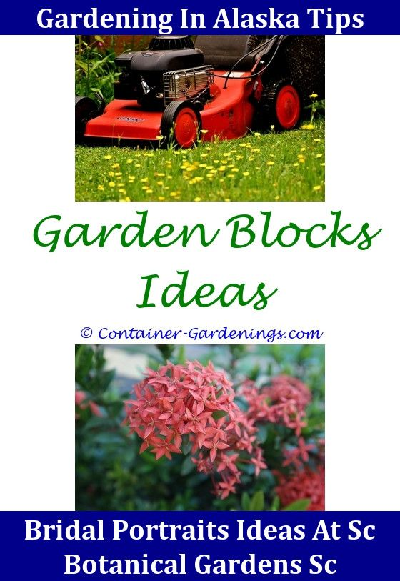 Cheap Garden Makeover Ideas Uk,Gargen flower garden mulch ideas ...