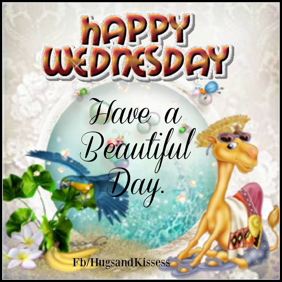 Happy Wednesday Hope You Have A Beautiful Day Happy Wednesday Funny Drinking Quotes Happy Wednesday Quotes