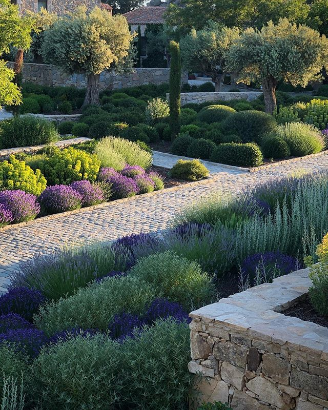 Stickytakkie Instagram Photos And Videos In 2020 Mediterranean Garden Spain Design Garden Design