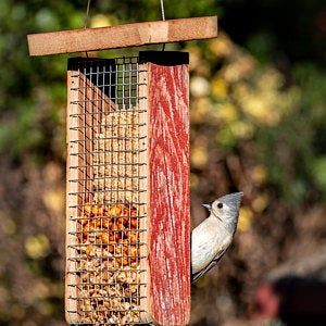 Barn wood Finch mix or sunflower hearts & chips feeder great for outdoors free shipping hand made and maintenance free