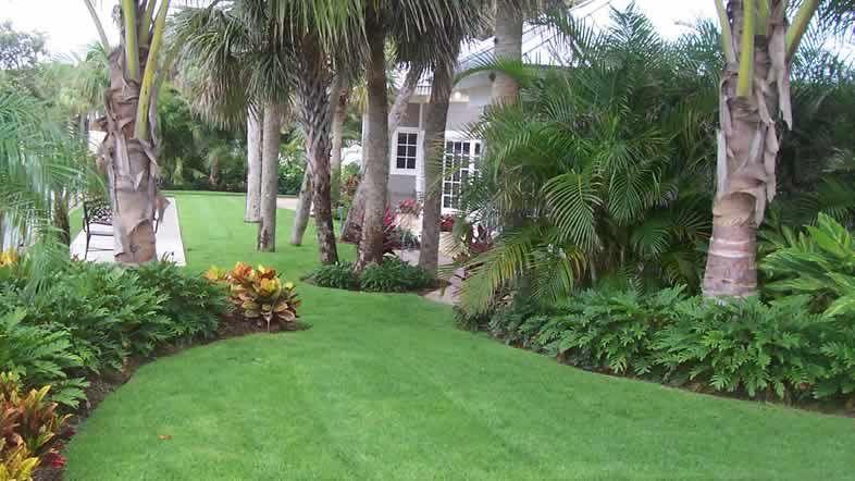 FLORIDA LANDSCAPING IDEAS | Florida landscaping, Garden ...