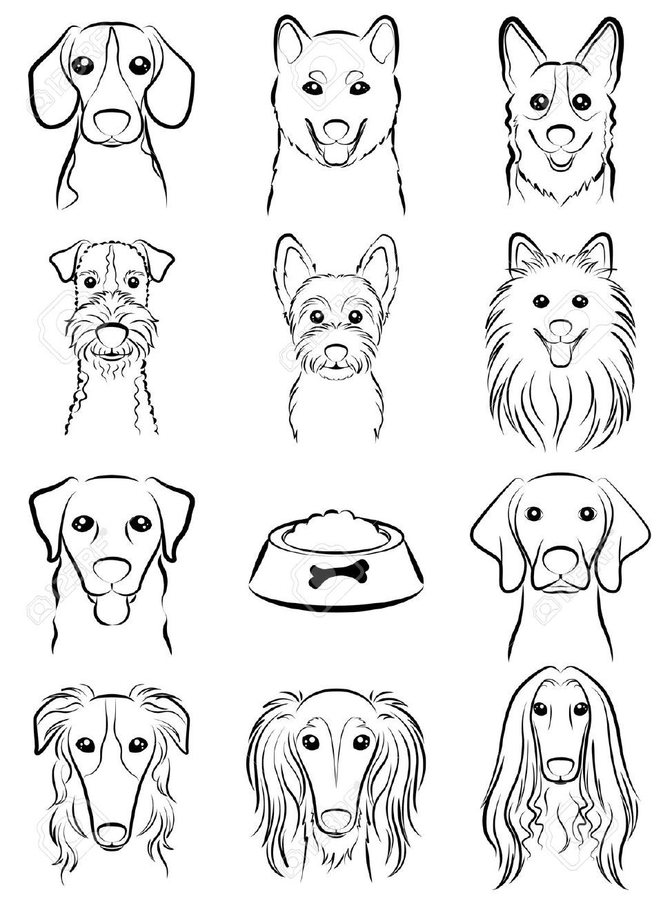 Line Drawing Animal Face : Dog line drawing royalty free cliparts vectors and