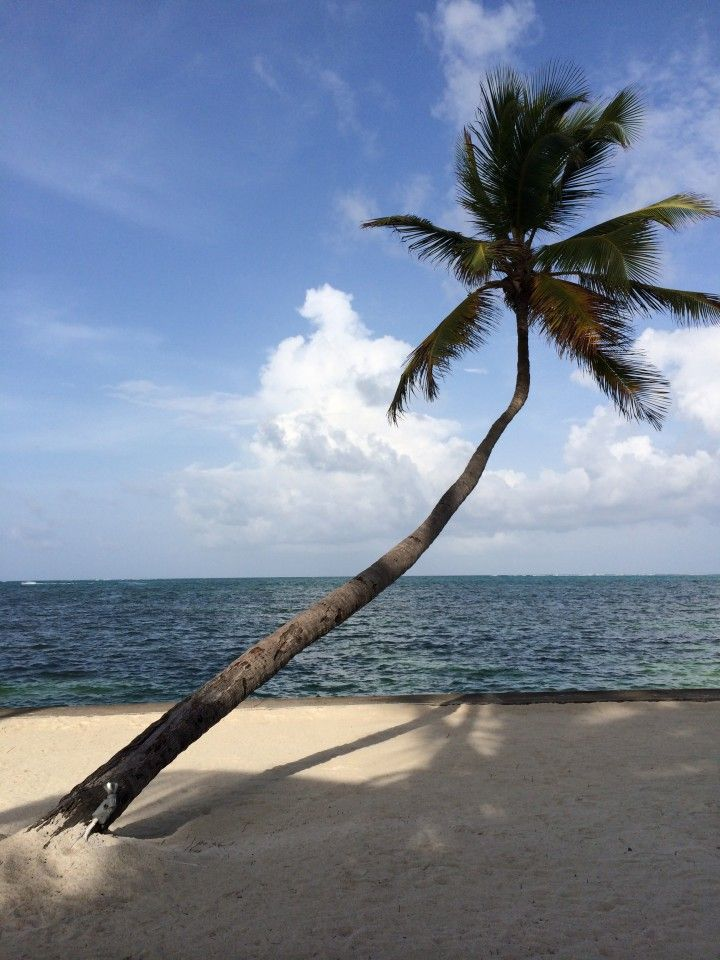 Belizean 'Value Luxury' Resort: Victoria House