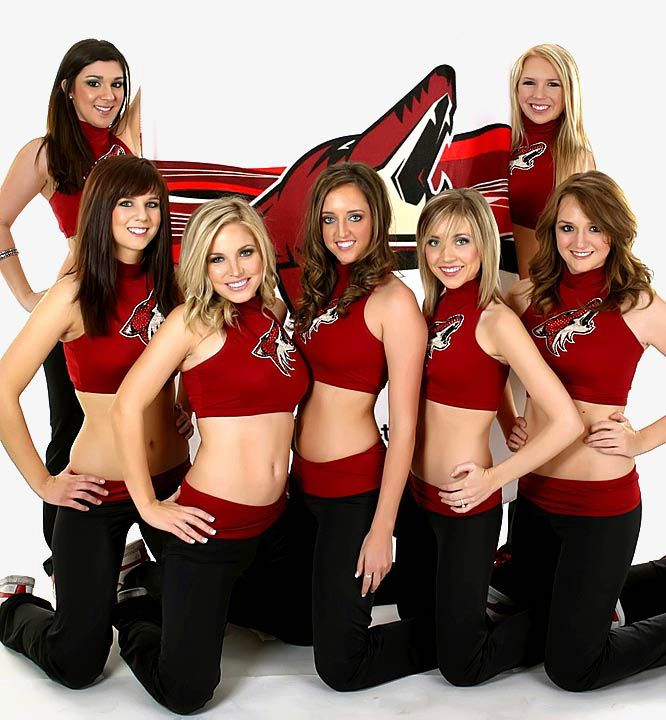 Image result for phoenix coyotes ice girls