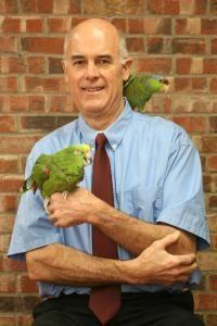 Holistic Animal Care In Columbus Ohio Healthy Pets Pet Care