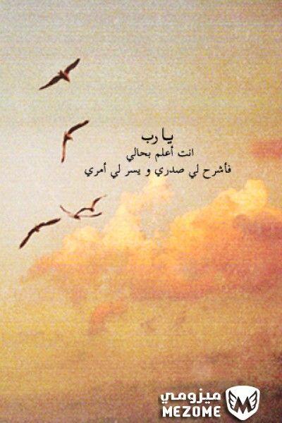 يارب انت اعلم بحالى فاشرح لى صدرى ويسر لى امرى اسلامية Calligraphy Arabic Calligraphy Arabic