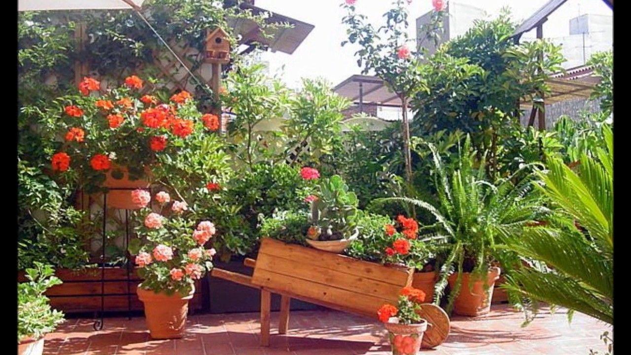 jardines pequeos terrazas balcones decoracion - Jardines Pequeos