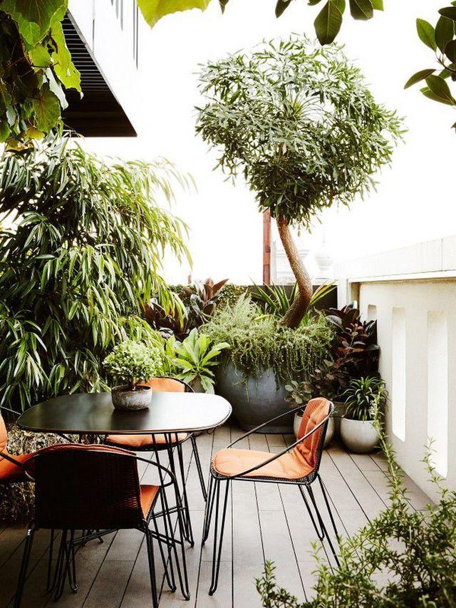 Patio maison : idées déco pour cour intérieure | Terrasse pflanzen ...