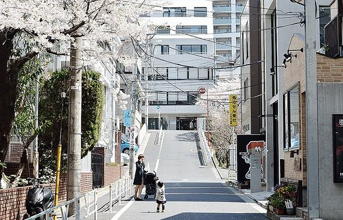 Image result for shibuya scenery