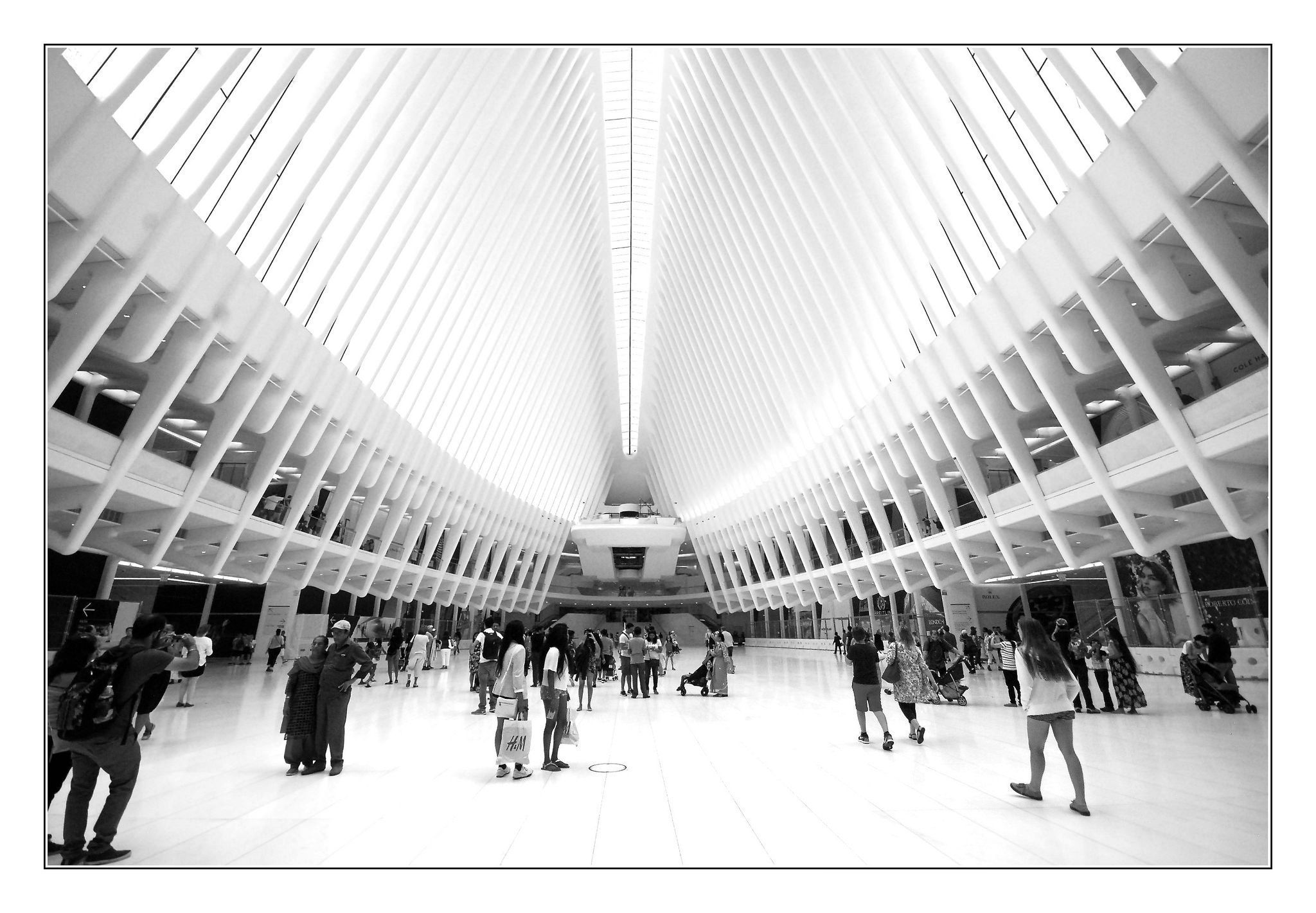 Bright Light #groundzeronyc The Oculus at Ground Zero NYC #groundzeronyc Bright Light #groundzeronyc The Oculus at Ground Zero NYC #groundzeronyc