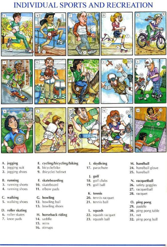 SPORTS English vocabulary, Picture dictionary, English