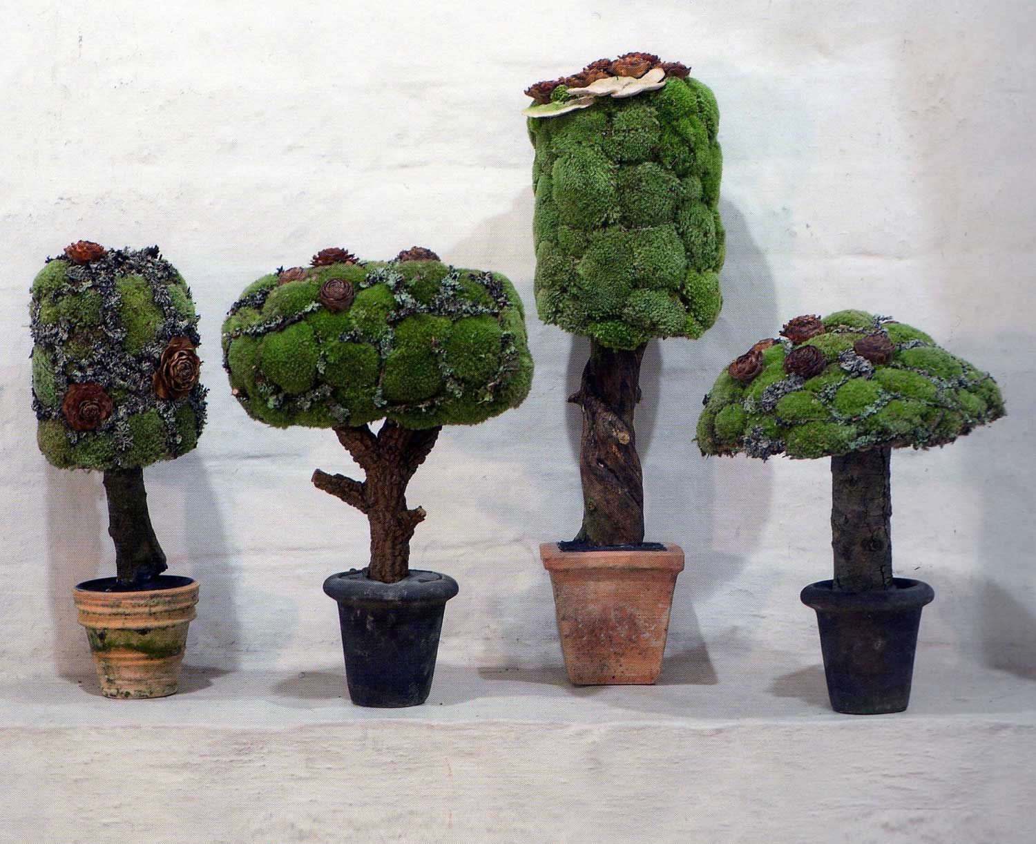 moss trees: pot, branch, cement, chicken wire to attach the moss ...
