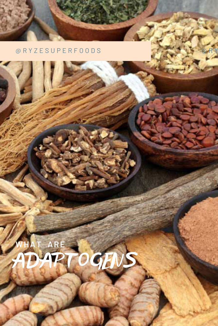 """Adaptogens are a specific group of botanicals and fungi that """"adapt"""" (hence their name) the body to environmental stressors. As part of your daily rituals, they help fight fatigue, keep us focused, and calm. Since most of us are #stressedAF, anything that helps us become more chill is a good thing.  #adaptogens #stressless #takethetime #deepbreathing #clearmind #stressfree #takeabreath #emotionalwellbeing #stressrelief #breathedeep"""