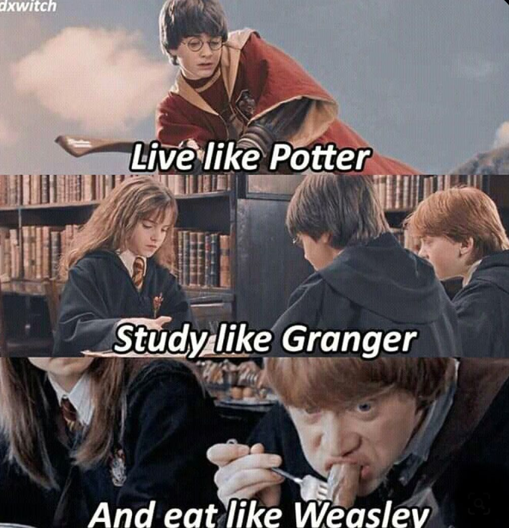 Harry Potter Meme In 2020 Harry Potter Jokes Harry Potter Characters Harry Potter Pictures