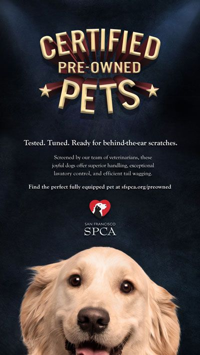 Via Adwiz We Ve All Seen The Pre Owned Automobile Concept So The San Francisco Spca Used That Familiar Idea To Encourage People To Spca Dogs Dog Adoption