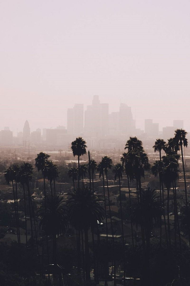 Los Angeles California By Sonja Los Angeles Wallpaper Scenery Landscape Illustration