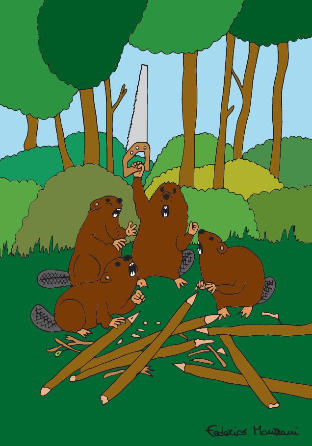 Beavers by Federico Monzani