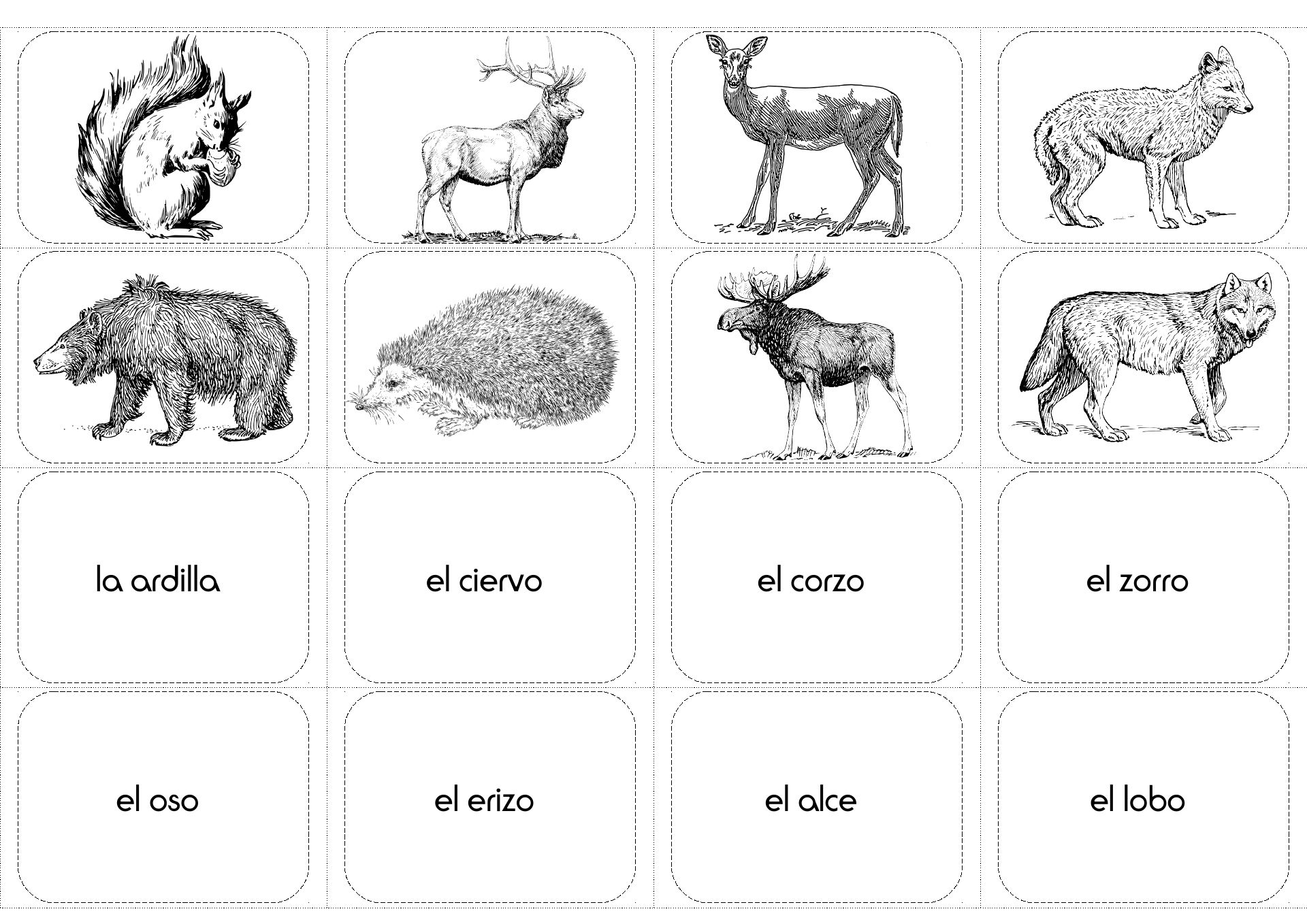Animals In Spanish Forest Los Animales Del Bosque Worksheet Activities Forest Animals Animals Activity Pack