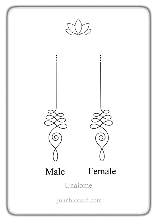 Unaloms Symbols Female Tattoo Ideas Male And Ide Unaloms Male And Female Symbols Tat Symbolic Tattoos Unalome Tattoo Tattoo Designs And Meanings
