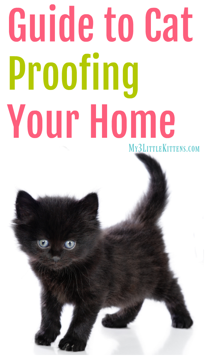 Guide To Cat Proofing Your Home My 3 Little Kittens Cat Proofing Cat Care Kitten Proofing