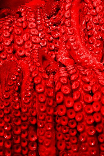 red.quenalbertini: Red Color | Council of Fashion Designers of America