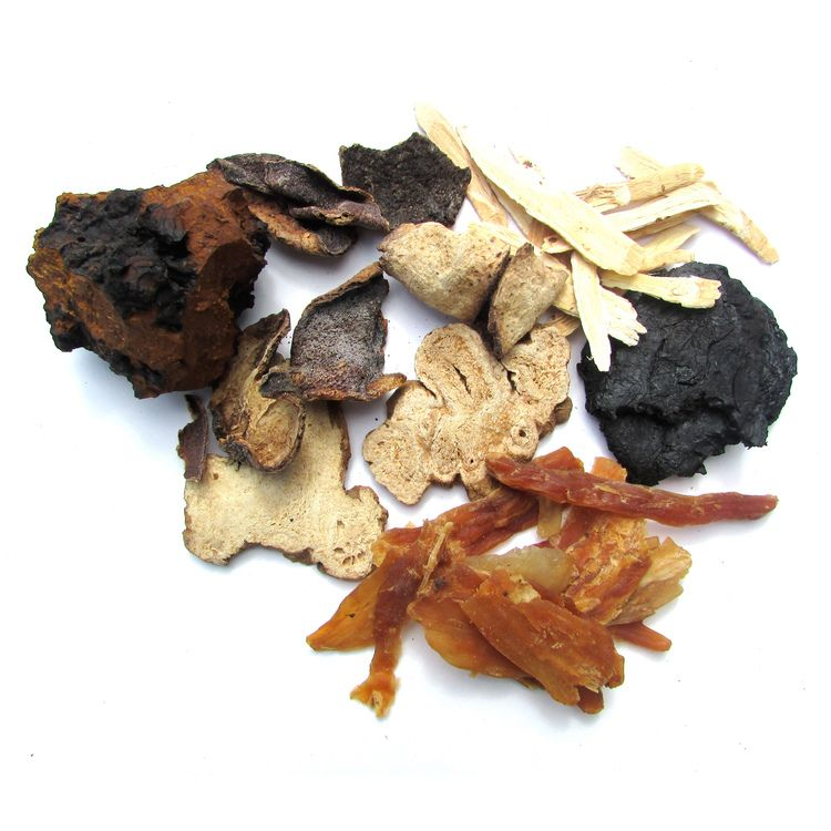 Jamaican Roots Tonic Herbs (With images) Herbs, Herbal