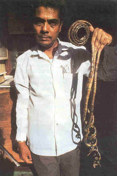 Longest Nails on One Hand: total 20 feet 2.25 inches: Shridhar ...