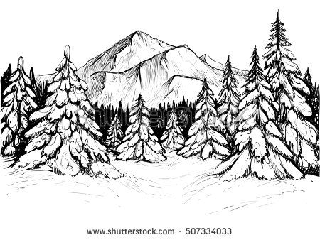 Winter forest sketch black and white vector illustration for Forest scene drawing