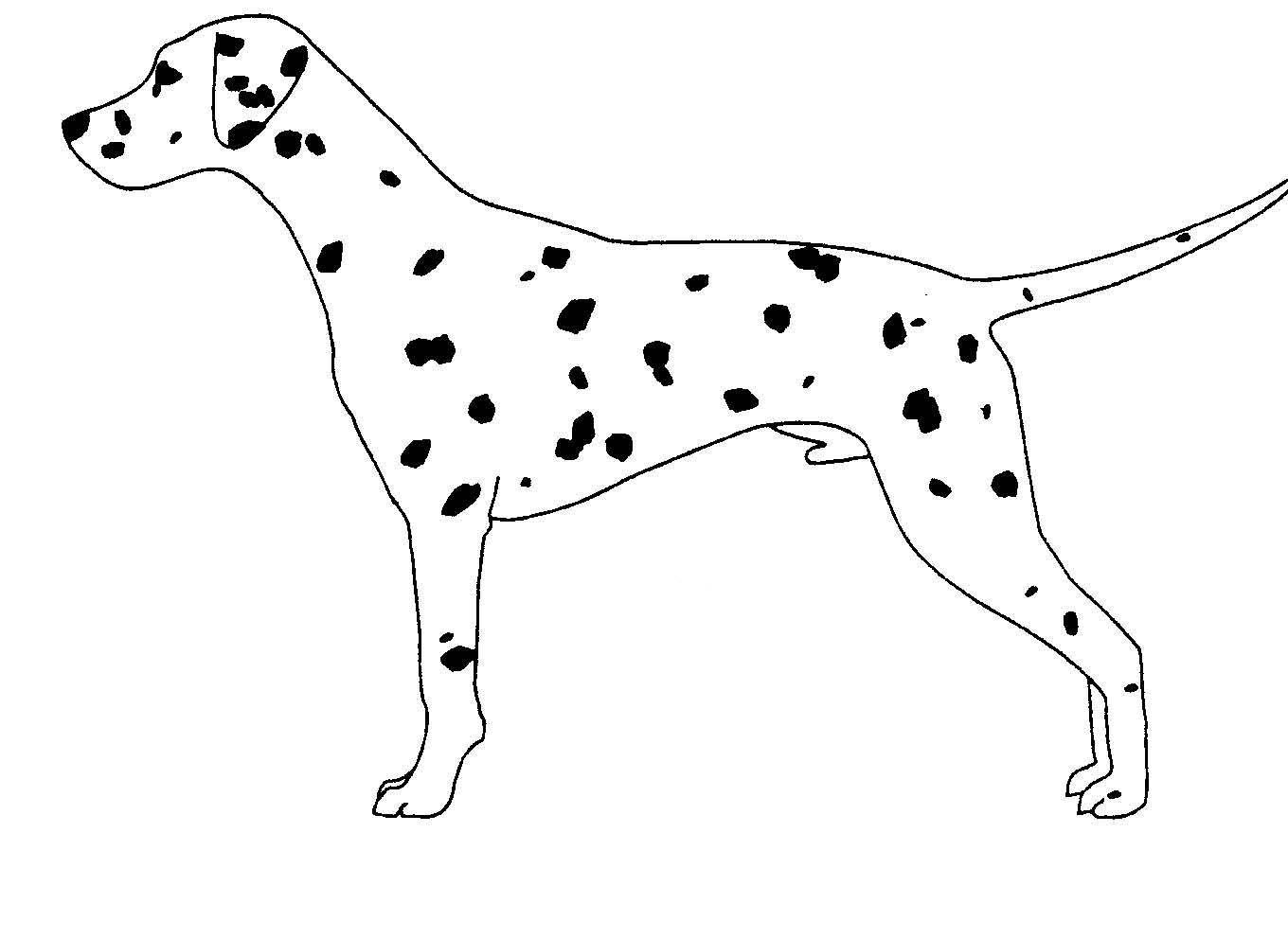 Pin By Kathryn Britton On Dog Outlines