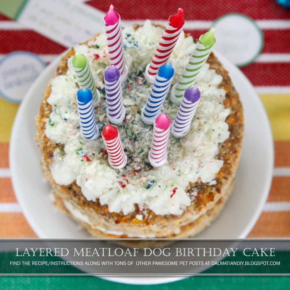 Recipe Layered Meatloaf Dog Birthday Cake Pet Business