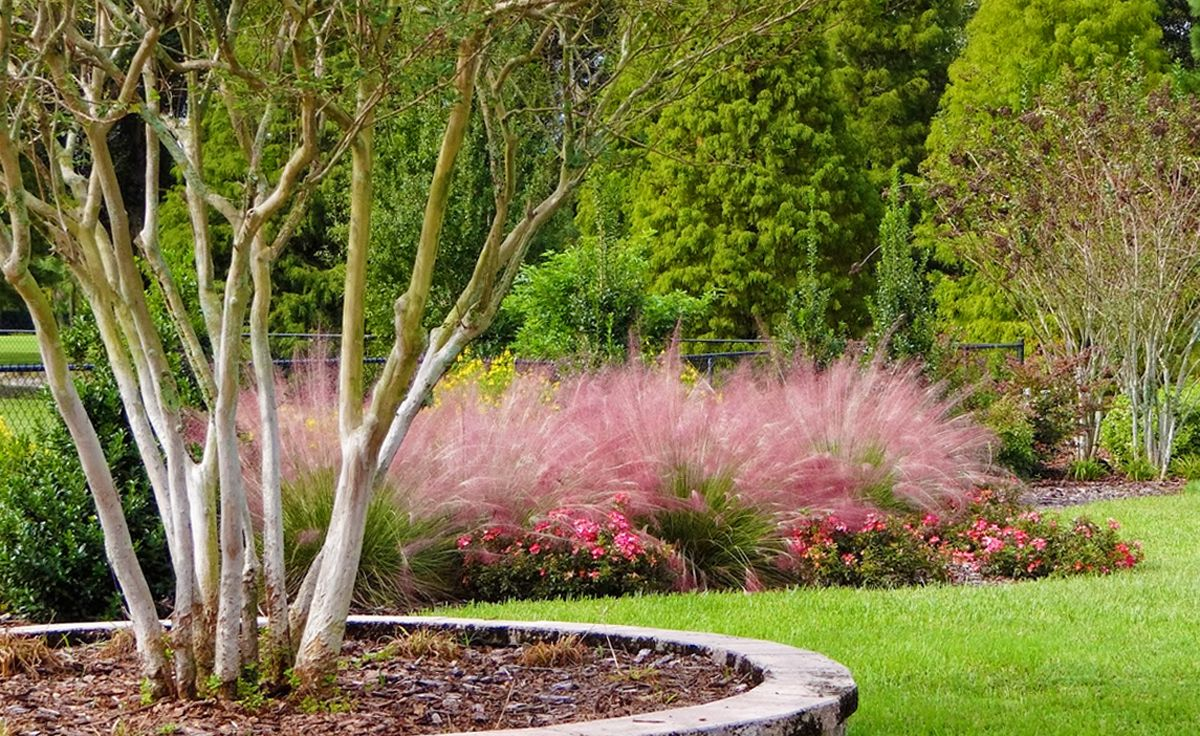 Flower And Grass Garden Features For Your Landscape Environment From Artistic Landscapes Beautiful Grasses Landscaping Garden Features Tall Grass Landscaping
