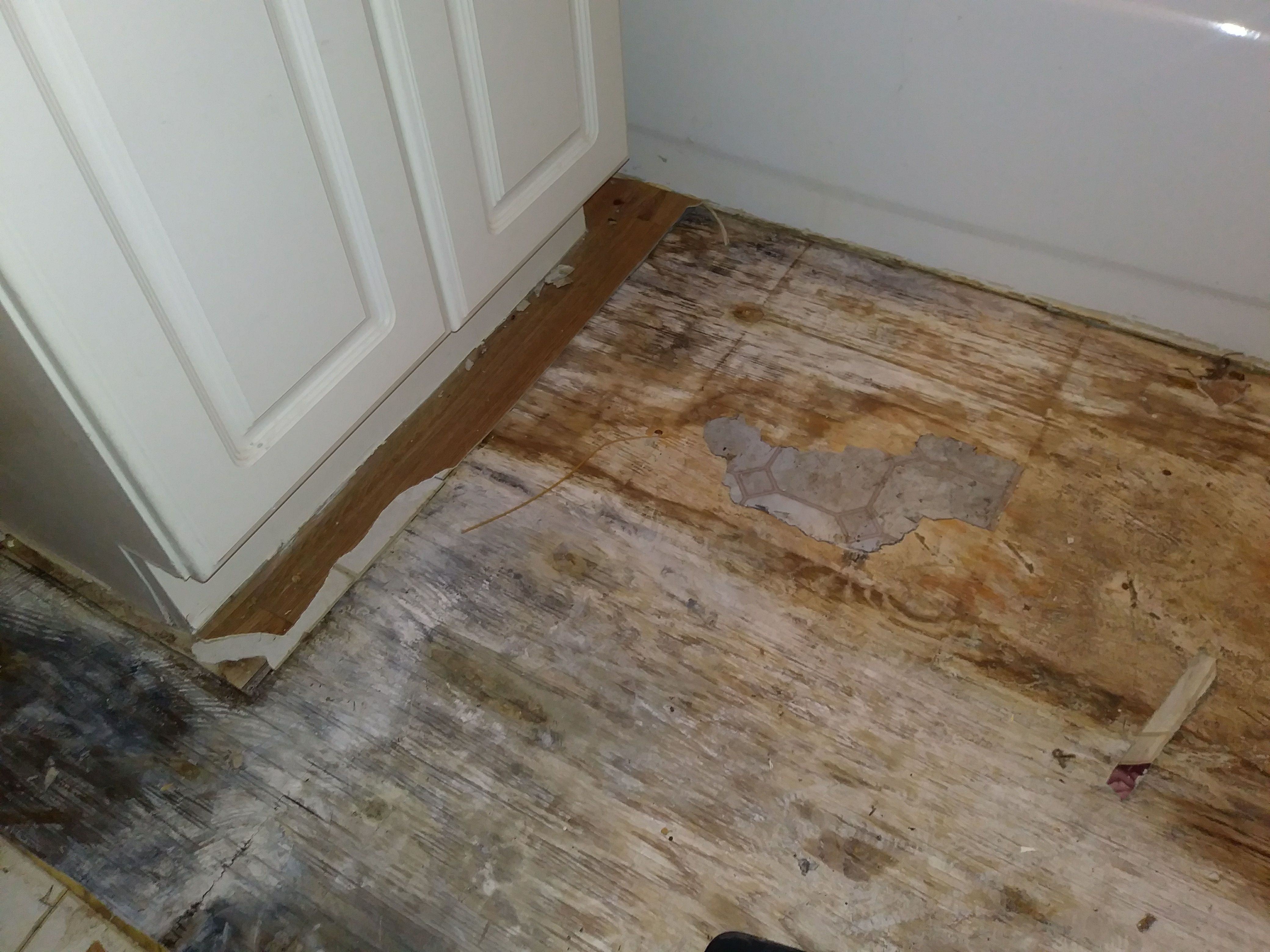 We installed ceramic tile in the bathroom and fixed the subfloor we offer flooring installations carpet cleaning janitorial cleaning services and water damage services dailygadgetfo Choice Image