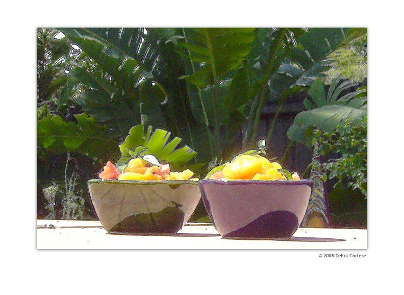 Mango Salsa On The Patio photopainting by Debra Cortese