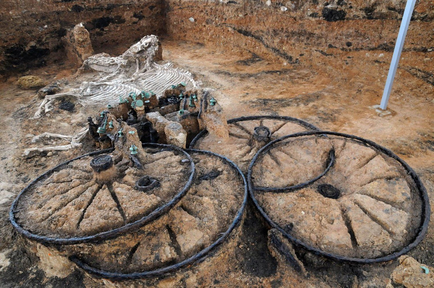 The Story Behind That 2 000 Year Old Thracian Chariot You Saw On