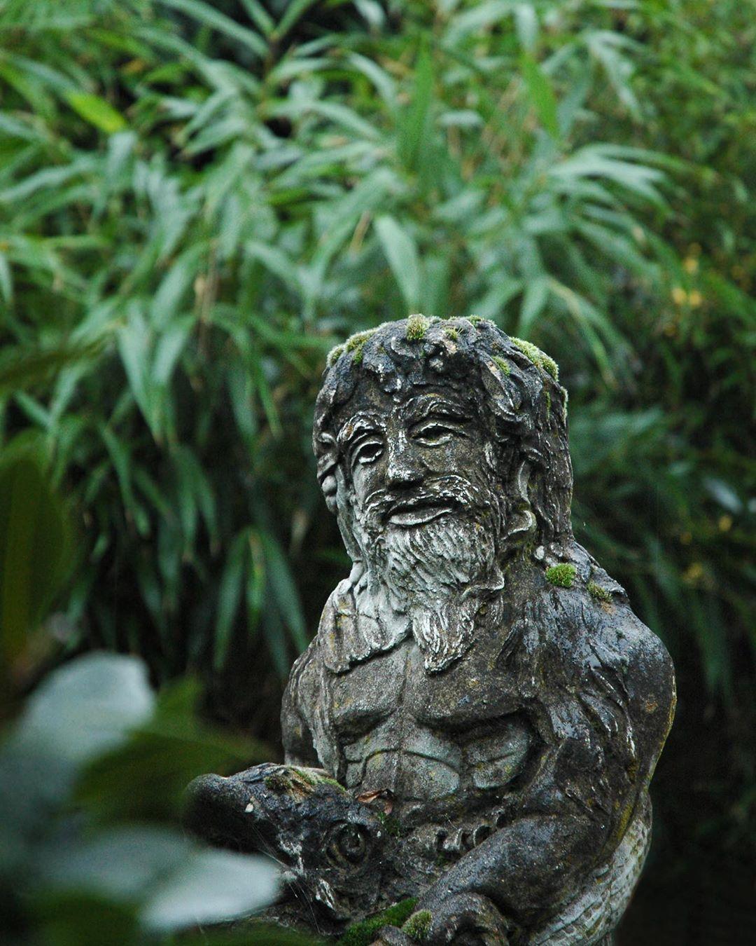 Secret garden. . . .  #sunshinegardencentre #gardencentrelife #londongardencentr... #bamboo #beautiful #contemporarygarden #cottagegarden #gardenblog #gardencentrelife #gardendesign