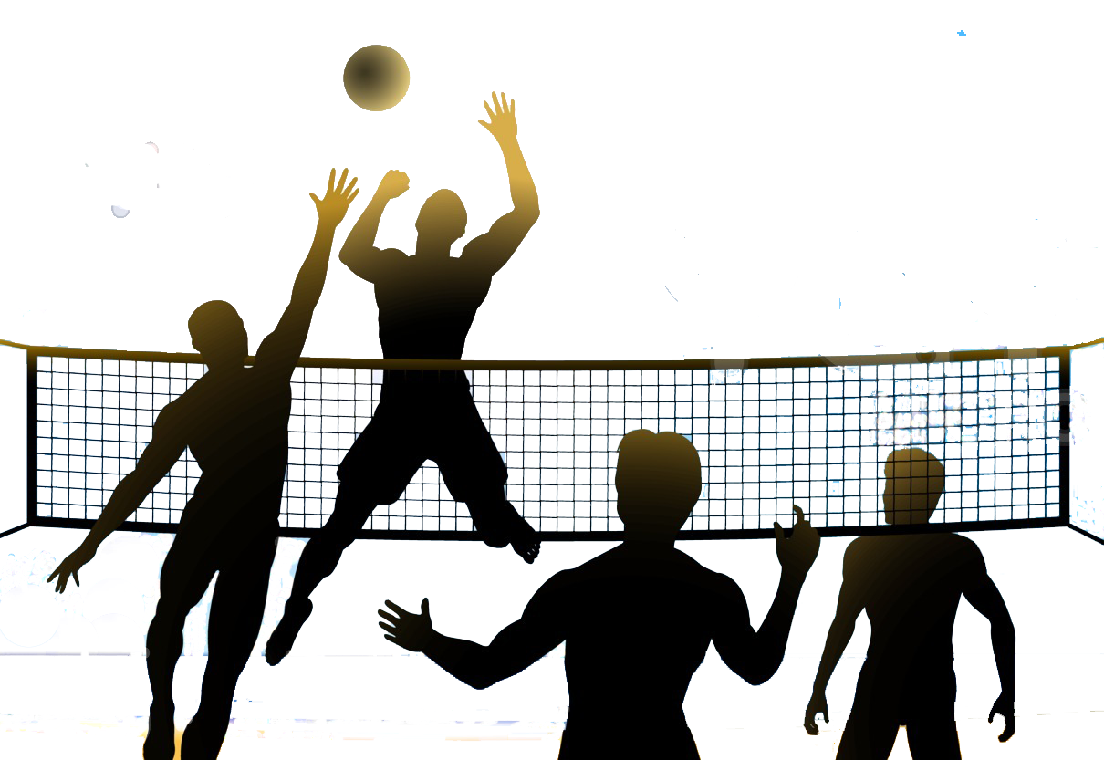 Volleyball Png Image Volleyball Sports Clips Sports