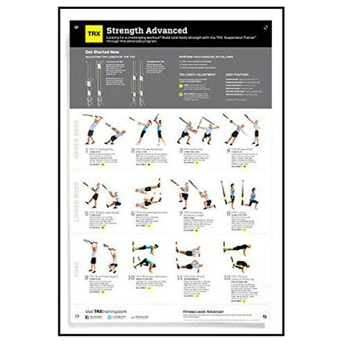 Dumbbell Exercises Workout Poster Now Laminated Strength Training