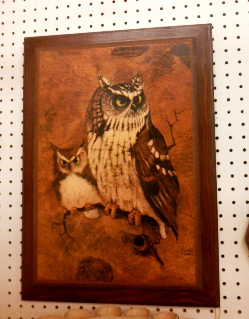 1970s Richard Hinger 'Screech' Owl Picture- $45.00 | And ...