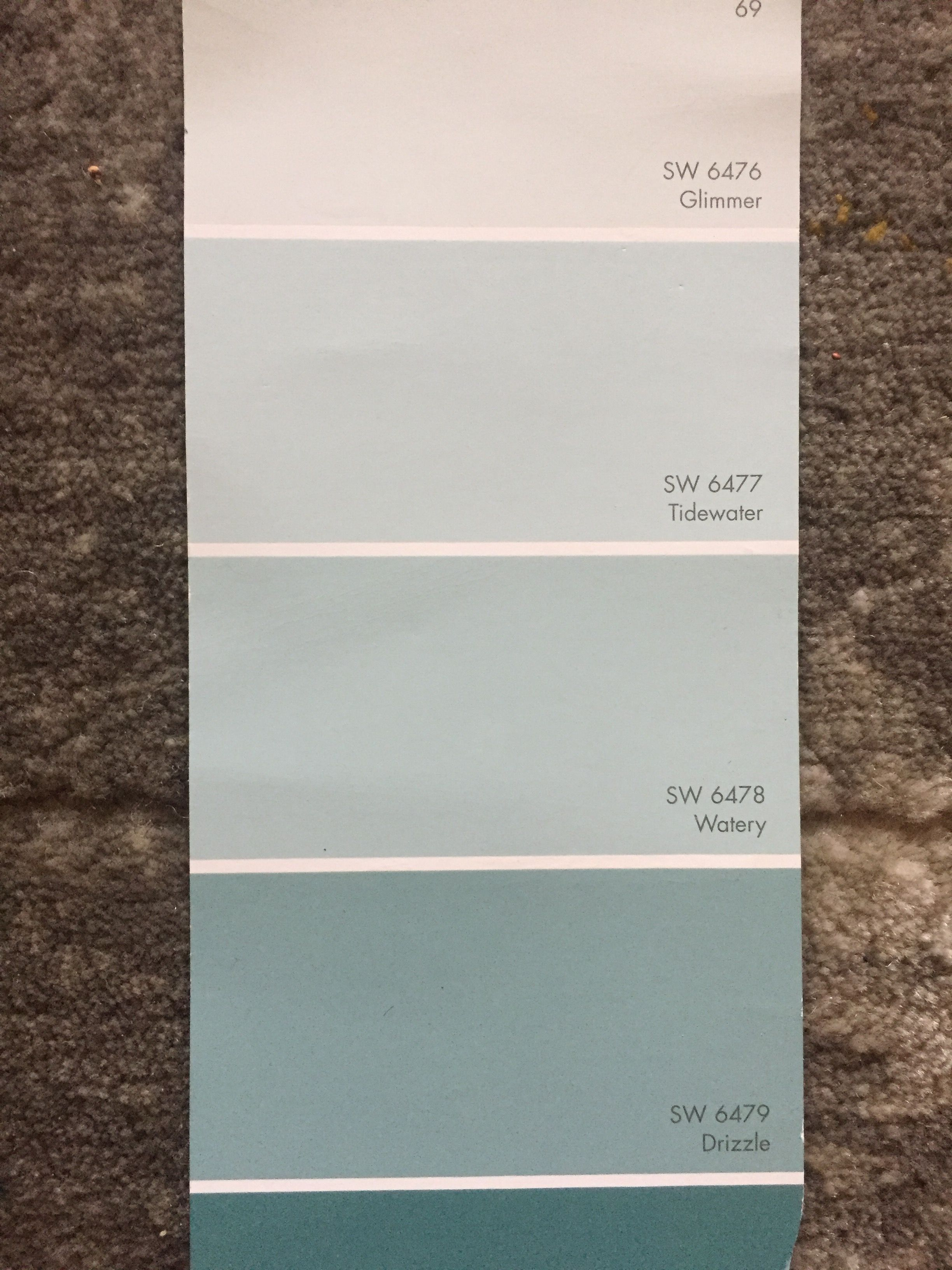 Sherwin Williams Glimmer Tidewater Watery Drizzle Paint