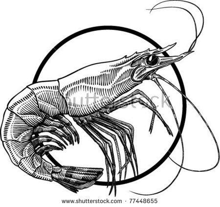gallery for amp gt shrimp cocktail clipart black and white rh pinterest co uk