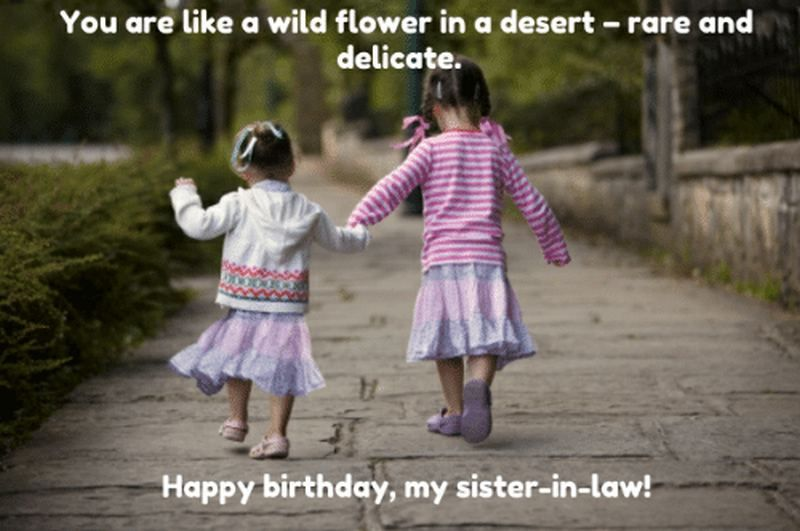 91 Happy Birthday Sister Memes For Your Sibling That Is Also A Friend Sister Birthday Quotes Birthday Wishes For Sister Sister In Law Birthday