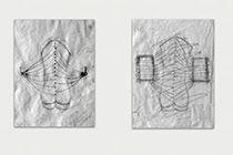 YENY CASANUEVA Y ALEJANDRO GONZALEZ. PROYECTO PROCESUAL ART
