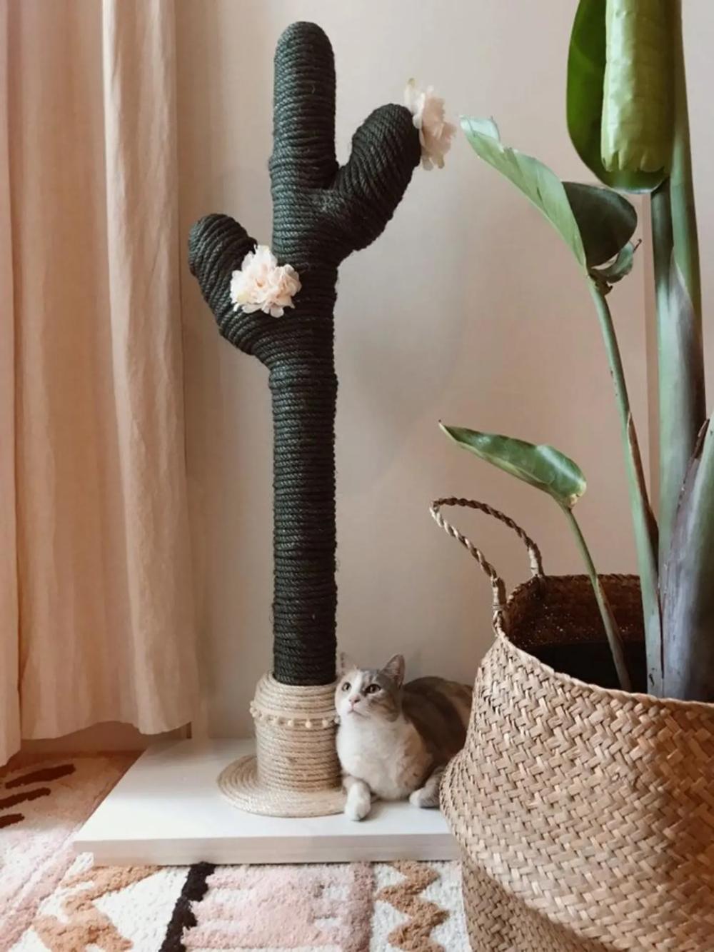 cat scratcher plants Google Search Diy cat scratcher