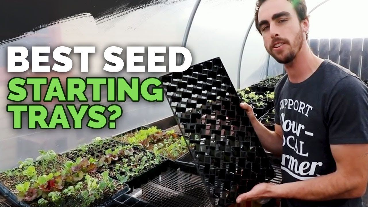 Best seedling trays soil blocks winstrip and plug trays