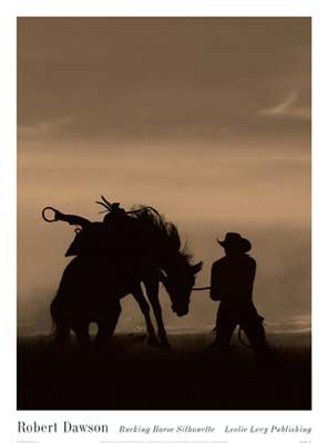 Bucking Horse Silhouette  by Robert Dawson Horse Photo Art Print