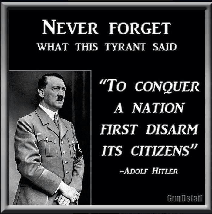 Gun Control Quotes Gorgeous Pinmathew On Facts  Pinterest  History Facts Big Government . Review