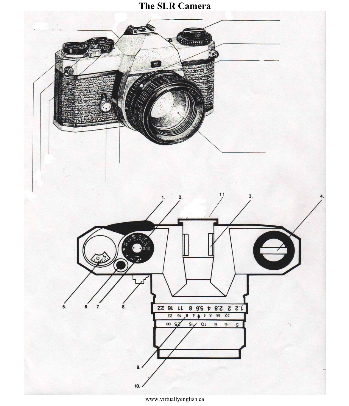 Film Camera Diagram